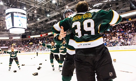 Texas Stars American Hockey League Game for Two or Four at Cedar Park Center on Friday, November 28 (Up to 52% Off)