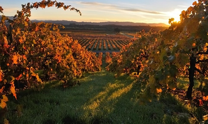 Best Western Dry Creek Inn - Napa / Sonoma: Stay with Wine Tastings for Two at Best Western Dry Creek Inn in Healdsburg, CA