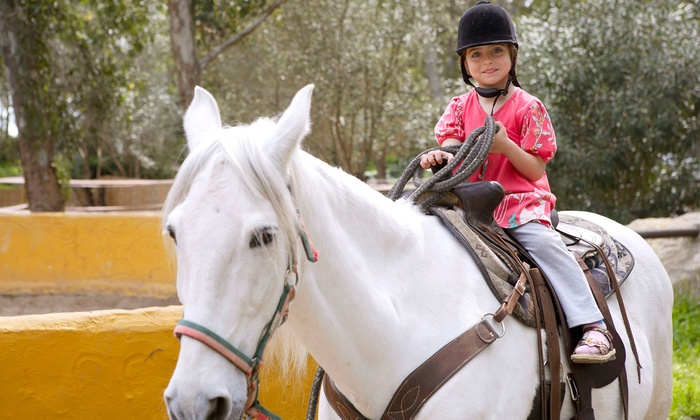 Five Star Ranch - Campbellville: Trail Ride for Two, Birthday Party for Up to Eight, or 10-Week Intro to Riding Course at Five Star Ranch (Up to 55% Off)