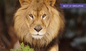 $35 For A One-year Individual Membership To Oakland Zoo ($70 Value)