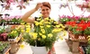 West Side Nursery - West Side Nursery: $15 for Flowers, Plants, Shrubs, and Trees at West Side Nursery in Murray ($30 Value)
