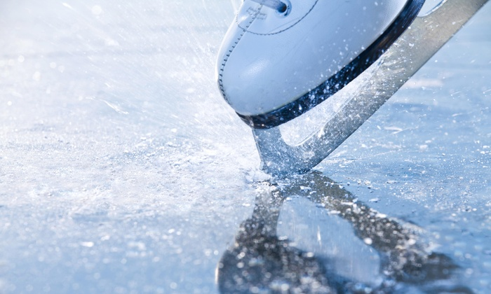 Oak Lawn Park District Ice Arena - Oak Lawn: 20% Off 9 Week Sessions at Oak Lawn Park District Ice Arena