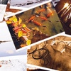 Up to 54% Off Printing Services