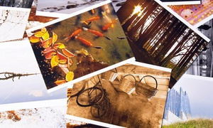 Print Headquarters: Printing Services at Print Headquarters (Up to 54% Off). Two Options Available.