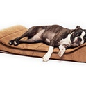 Sage Memory-Foam Orthopedic Pet Lounger