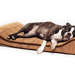 Sage Memory-Foam Orthopedic Contoured Pet Lounger
