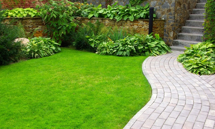 Bull's Eye Lawn Service - Fort Lauderdale: $206 for $375 Worth of Landscaping — Bull's Eye Lawn Service