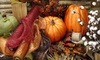 Ellis Home and Garden: $25 for $50 Worth of Fall Decor, Deco Mesh Supplies, and More from Ellis Home and Garden