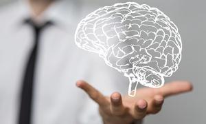 Neurotech Brain Training: One Brain-Training Sessions at Neurotech Brain Training (61% Off)