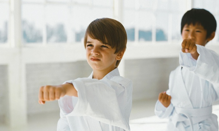 Focus Kids Karate Academy - Edina: $39 for One Month of Unlimited Little Ninjas Karate Classes at Focus Kids Karate Academy (Up to $199 Value)