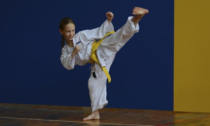 Mandeville Karate Training Center - 10: Eight Weeks of Unlimited Karate Classes at Mandeville Karate Training Center (55% Off)