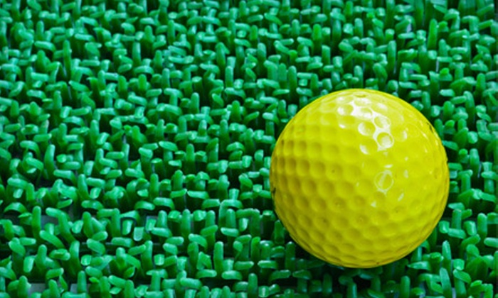 Nineteenth Hole Indoor Golf Centre - Bruleville: 5 or 10 One-Hour Driving-Range Sessions with Hot Dogs and Drinks at Nineteenth Hole Indoor Golf Centre (Up to 75% Off)