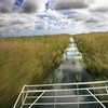 Up to 51% Off Everglades Airboat Tour Packages