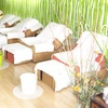 Half Off Reflexology Package in North Hollywood