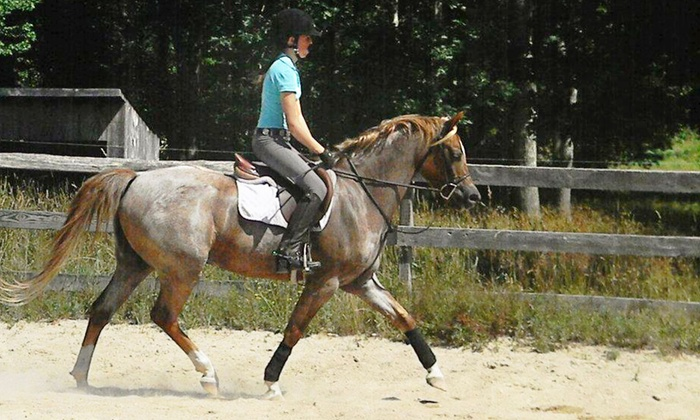 Hunter Ridge - Hopkinton: Two Private Horseback-Riding Lessons or Five Private Kids' Lessons at Hunter Ridge (Up to 52% Off)