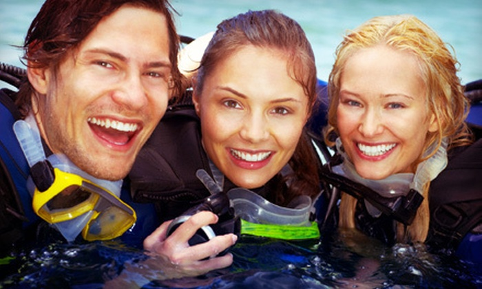 Chesapeake Underwater Sports - Annapolis: $19 for a Four-Hour Discover Scuba Class at Chesapeake Underwater Sports ($40 Value)