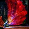 """Cirque du Soleil Presents """"TORUK – The First Flight"""""""