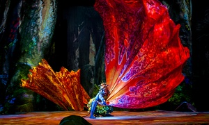 "Cirque du Soleil: ""TORUK"" - The First Flight: Cirque du Soleil Presents ""TORUK – The First Flight"" (February 25–28)"