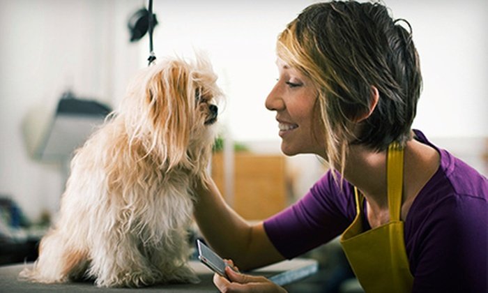 Pet Groomerie - Multiple Locations: Salon Dog-Grooming Package for a Small, Medium, or Large Dog at Pet Groomerie (Up to 53% Off)