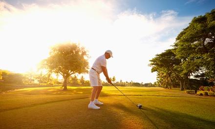 4-wöchiger DGV Golf-Platzreifekurs Deluxe mit einem PGA-Golflehrer bei KölnGolf (bis zu 55% sparen*)