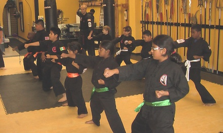 Up to 92% Off Martial Arts Classes at Glenn Wilson's Martial Arts Academy
