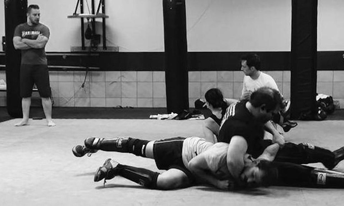 Titan Gym - Titan Gym: Up to 80% Off One or two months of Krav Maga at Titan Gym