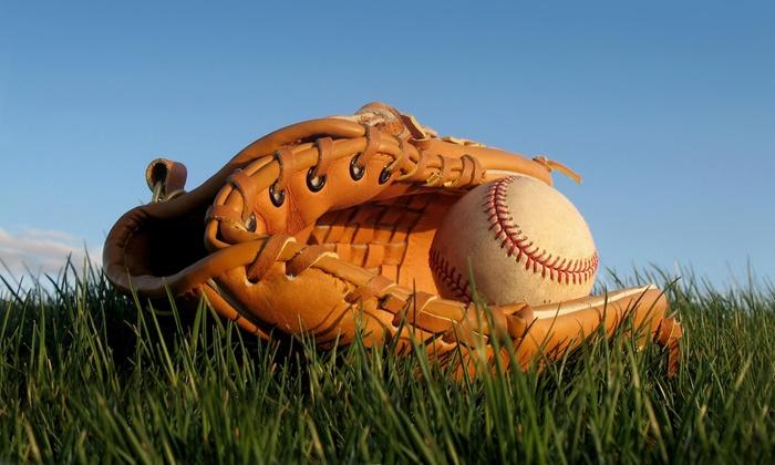 Dynasty Baseball Academy - Saginaw: A Baseball-Training Session from Dynasty Baseball Academy (66% Off)