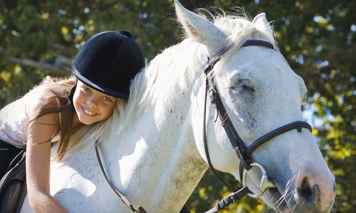 Fieldgate Stables Ltd.  - Toronto (GTA): One or Three Private Horse-Riding Lessons or Riding Boot Camp at Fieldgate Stables Ltd. in Hornby (Up to 63% Off)