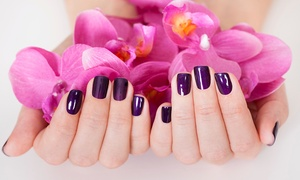 Stunning Nails: Waterless Mani-Pedi with Normal ($39) or Gel Polish ($49) at Stunning Nails (Up to $89 Value)