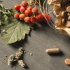 Online Medicinal Herbs Course