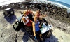 Epic Tours - Honolulu: Hilo or Kona Jeep Adventure Tour for Two or Four from Epic! Tours (50% Off)