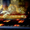 Up to 41% Off at Motor City Meatball Kitchen