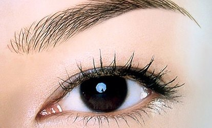 image for $149 for One 3D Microblading Session for Both Eyebrows at Spa Kastle ($300 Value)