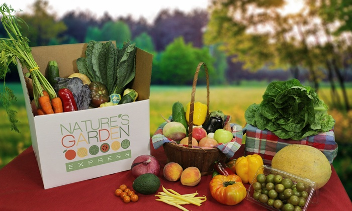 Nature's Garden Express: $19 for One Small, Delivered Box of Organic Produce from Nature's Garden Express ($38 Value)