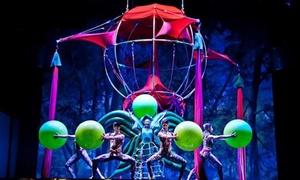 Sonics in Meraviglia: Sonics in Meraviglia - Il 31 ottobre al Teatro Nuovo di Torino (sconto 51%)