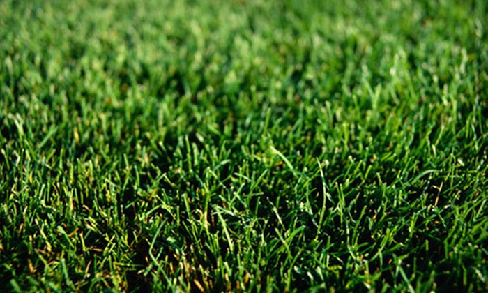 GrowinGreen - Stockton Homes: $94 for $200 Worth of Biologically Enhanced Lawn-Care Treatments from GrowinGreen