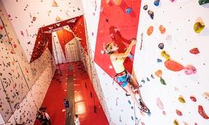 Climb Up Aix: Cours découverte d'1h30 d'escalade pour 1 ou 2 adultes dès 12,90 € chez Climb Up Aix