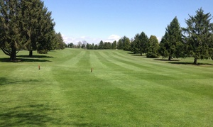 Up to 51% Off Golf at Valley Golf Club at Valley Golf Club, plus 6.0% Cash Back from Ebates.