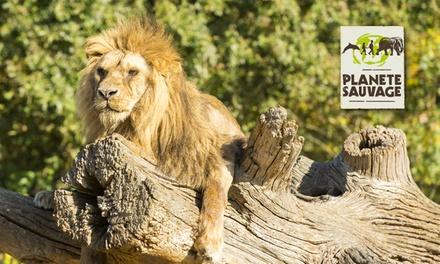 Une entrée tarif unique pour le parc animalier de type safari et la partie piétonne à 21 € chez Planète Sauvage