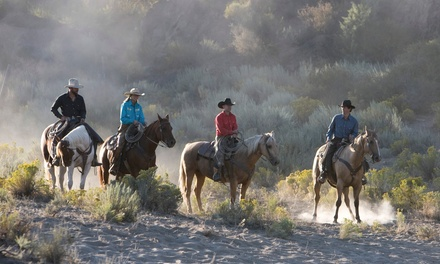 Horseback Riding for One, Two, Three or Five from HorseWorks Wyoming (65% Off)