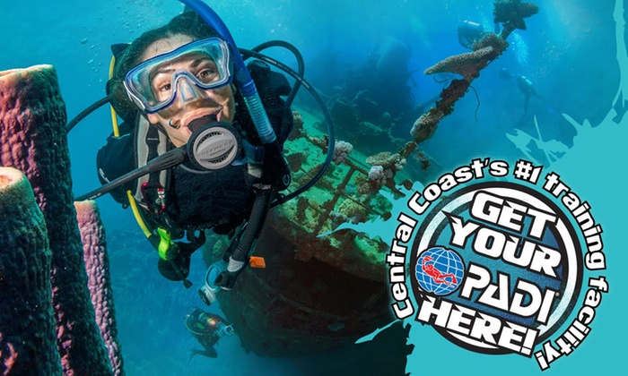 Padi open water dive course dive imports australia groupon padi open water dive course fandeluxe Choice Image