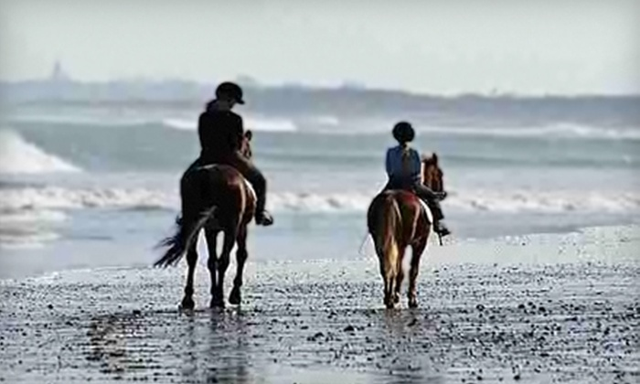 Hidden Hollow Farm and Stables - Pembroke: $35 for a One-Hour Private Horseback-Riding Lesson at Hidden Hollow Farm and Stables in Pembroke ($75 Value)