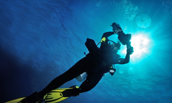 Pompano Dive Center - Sands Yachtel: $149 for a Two-Hour Discover Underwater Photography Class from Pompano Dive Center in Pompano Beach ($300 Value)