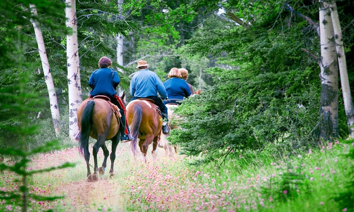 Morris's Shadow Mountain Stables - Lea Hill: Horseback Ride for One or Two, or Horseback Ride with Intro Lesson at Morris's Shadow Mountain Stables (Up to 55% Off)