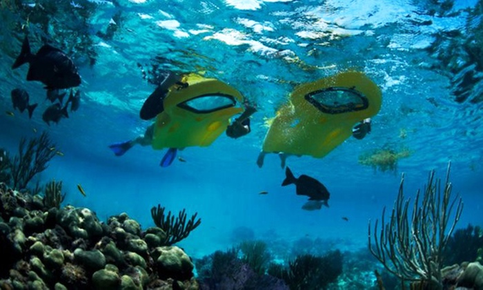 PaddleAwaySports - Harbors: Zayak Sea Sled Rental or Snorkel Equipment for Two or Four at PaddleAwaySports (Up to 55% Off)