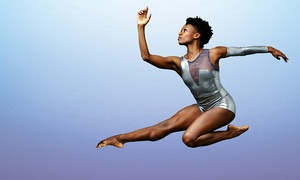 Alvin Ailey American Dance Theater: Alvin Ailey American Dance Theater on March 4 or 5