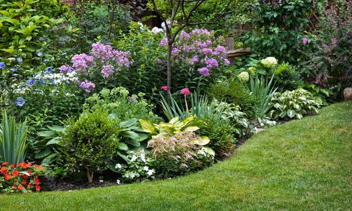 Petal & Twig - Raleigh / Durham: $59.99 for a One-Hour Landscaping Consultation from Petal & Twig ($120 Value)