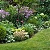 50% Off Landscaping Consultation