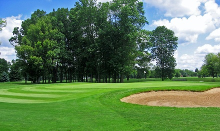9 or 18 Holes of Golf with Cart for Two at Crestview Golf Course (42% Off)
