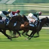Del Mar Thoroughbred Racing Tickets